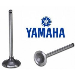 Valvula de Admissão Original Yamaha YZF 250 - WRF 250